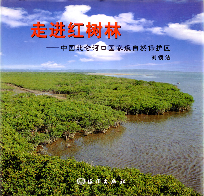 Approach to Mangroves
